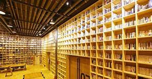 安徽省图书城加固项目